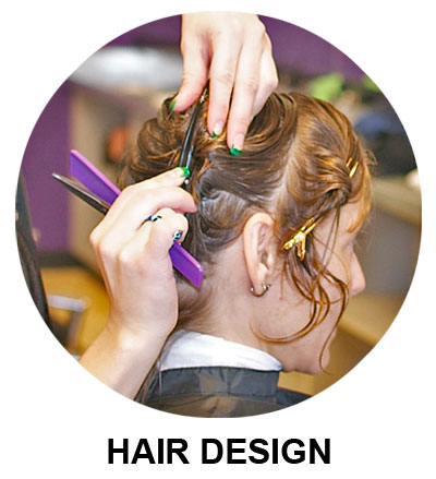 Hair Design Program & Course Information